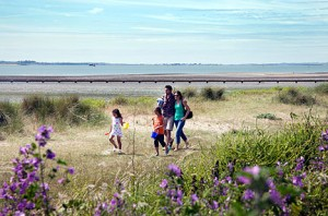 Our Mersea Island holiday park