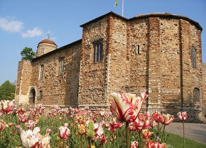 Colchester Castle with tulips