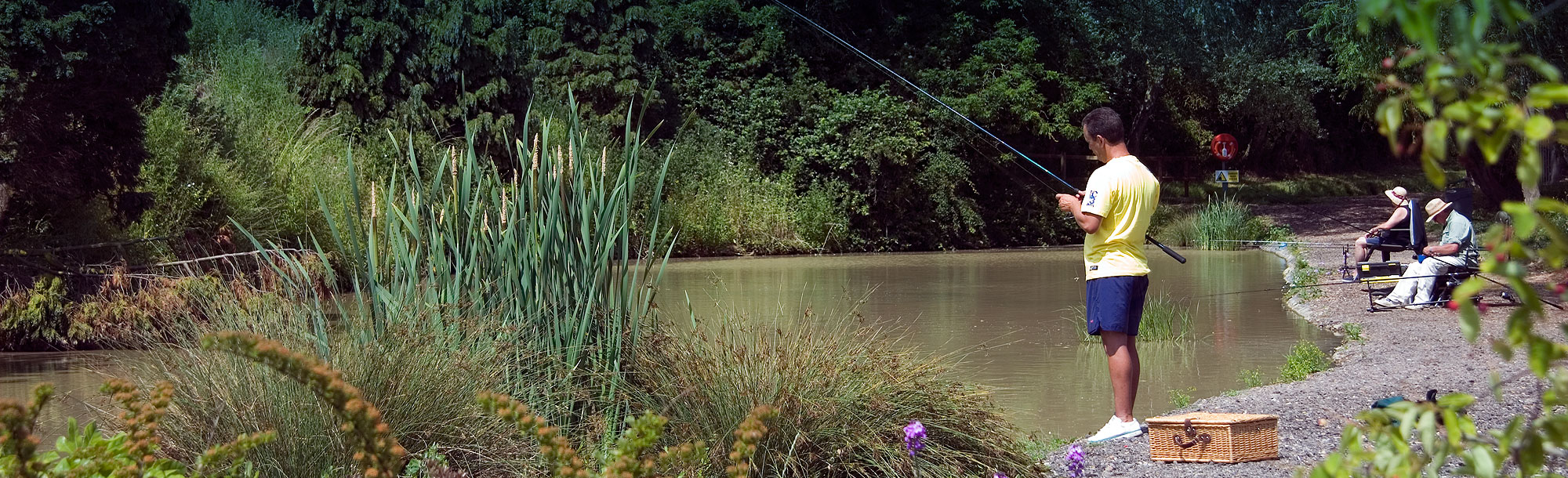 Essex campsite with coarse fishing lakes
