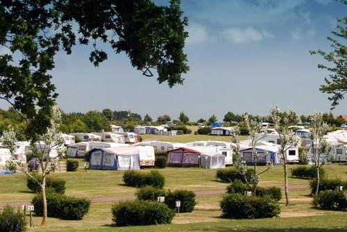 Essex campsite - Waldegraves, Mersea Island