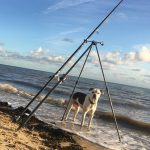 Dog Friendly Waldegraves Holiday Park Essex